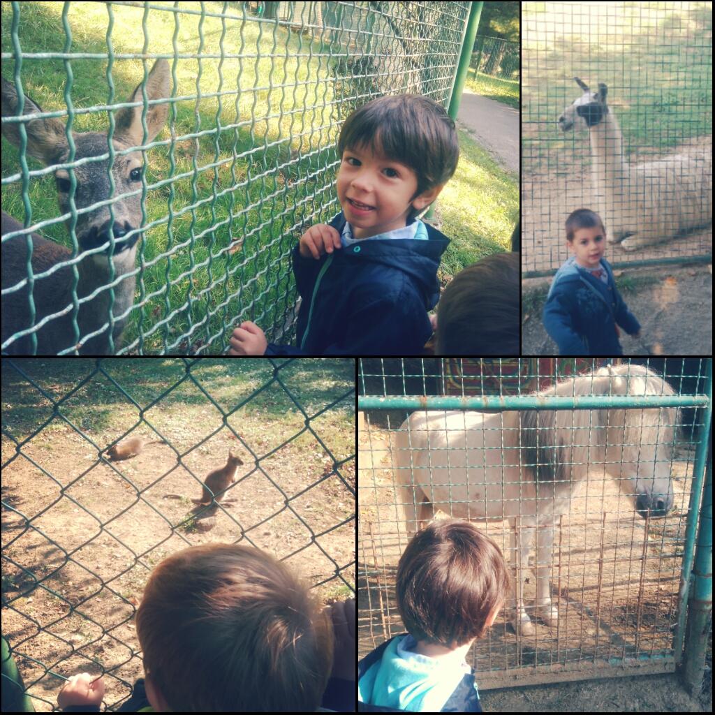 Sortie Zoo 1